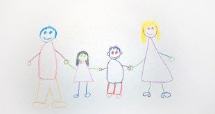 discapacidad familia numerosa