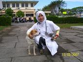khinzir_gadis_tudung_5.jpg