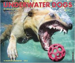 calendar_underwater