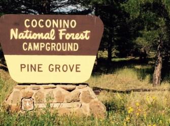 Pine Grove Camp Ground AZ