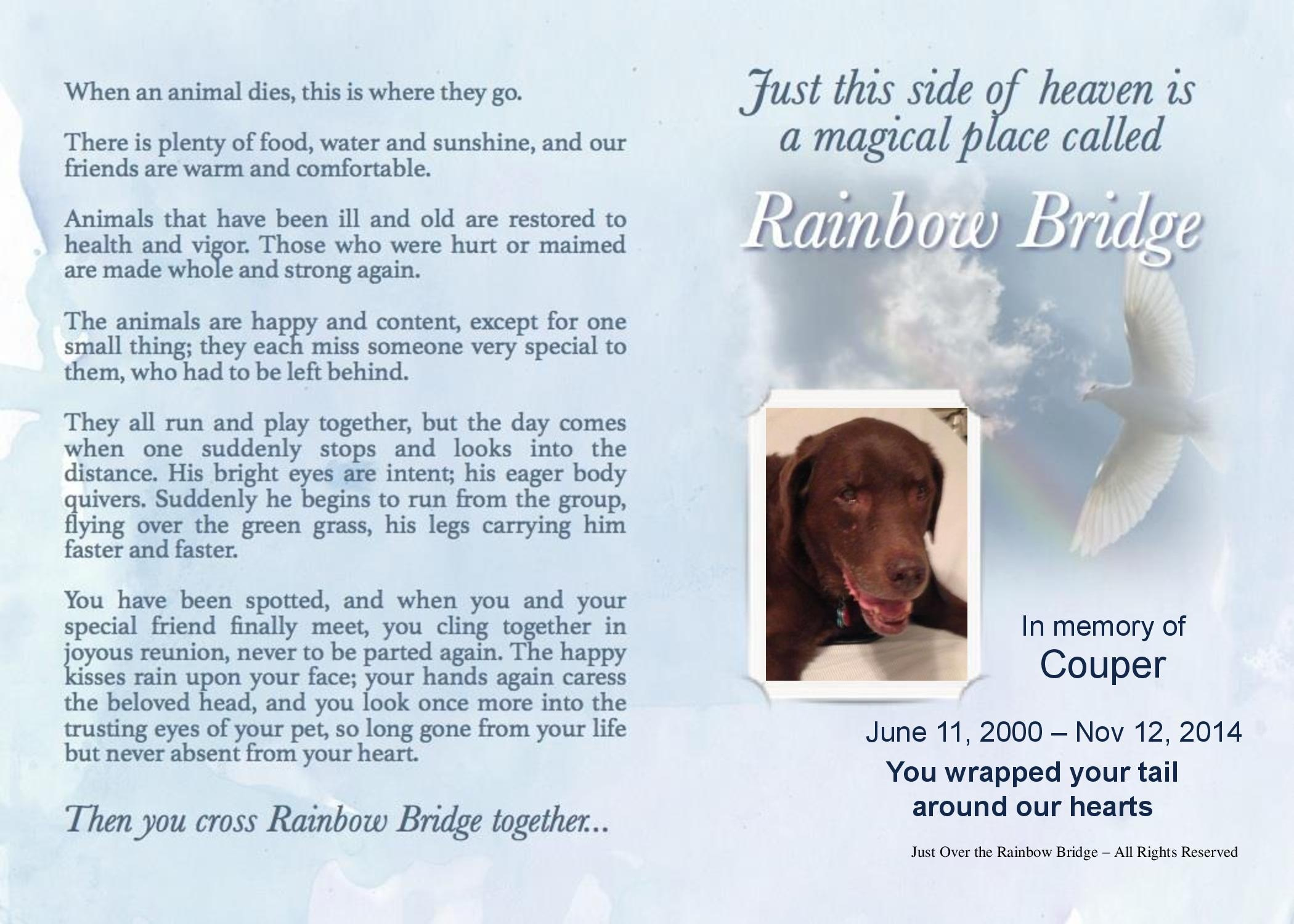 Personalized Memorial Ts Best Pet Sympathy Ts