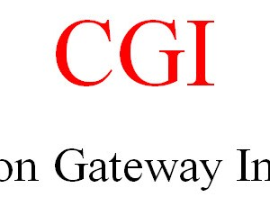 CGI (Common gateway interface