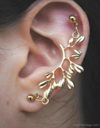 Cartilage To Lobe Earrings 72 Best Jewelry Images On ...
