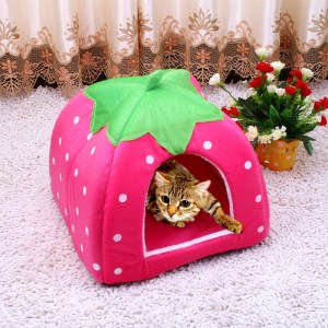 Cute Fold-able Cat Kitten Bed House