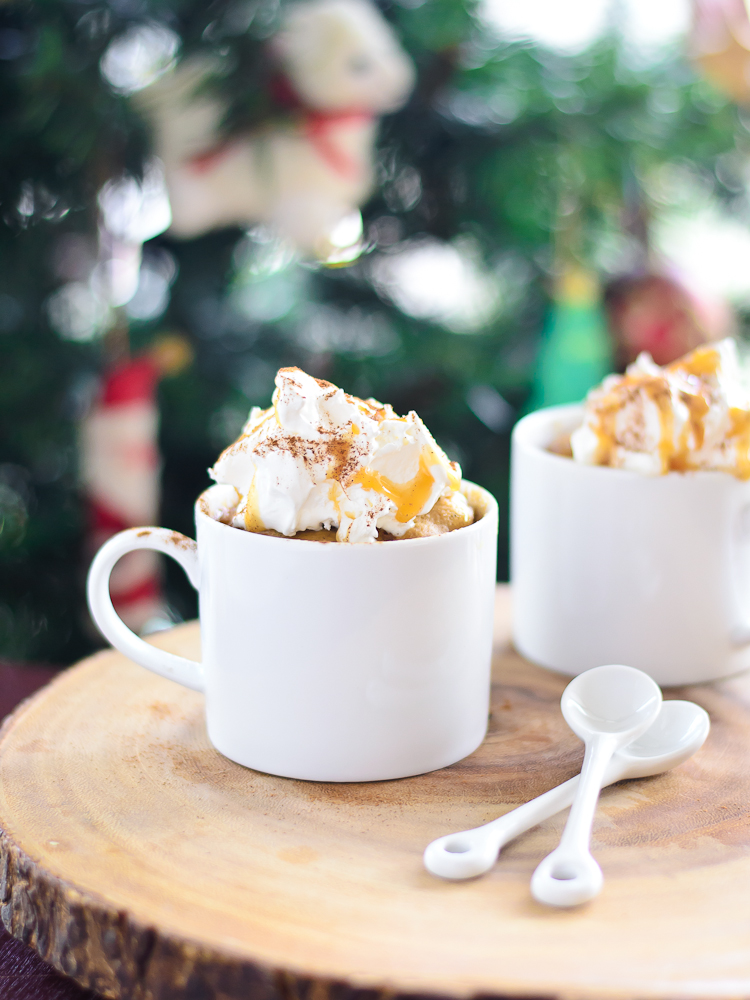 Gingerbread Mug Cake 5c (1 of 1)