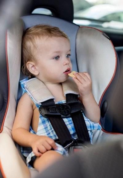 Happy toddler boy in car