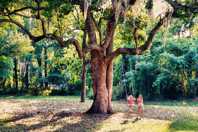 7 motivos que mostram a importância das crianças brincarem lá fora