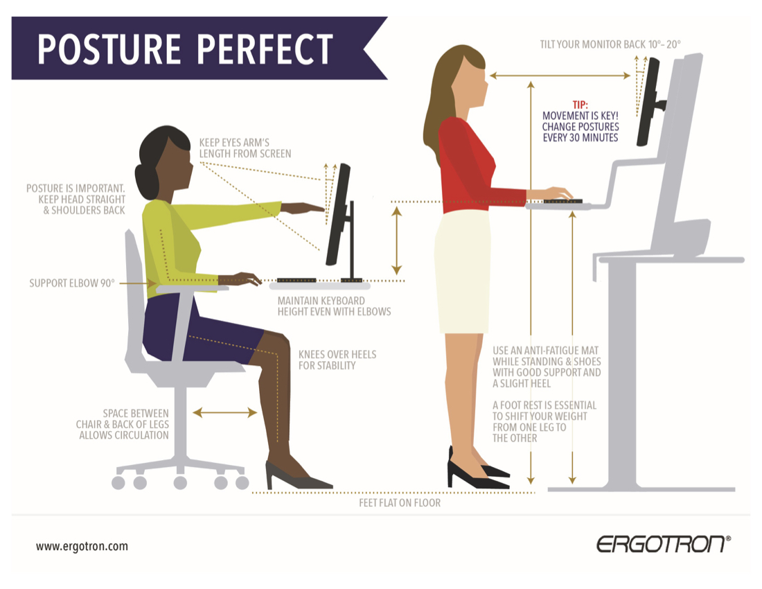 Posture Perfect Infographic  JustStandorg