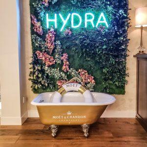 Vancouver - Canada - British Columbia - EXchange Hotel - Hydra