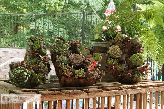 04 - UnSkinny Bop - Succulent Wreath