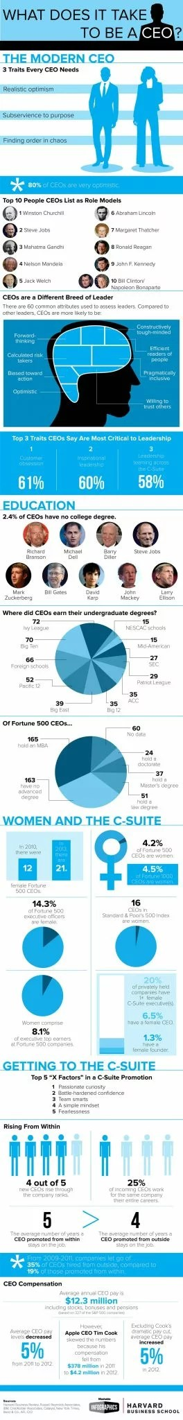 CEO Infographic