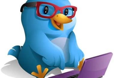 Twitter Followers Business Exposure