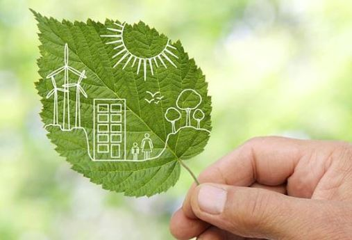 Eco-Consulting Services fast-growing green niche