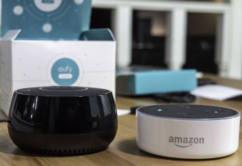 Amazon Echo Dot vs. Eufy Genie