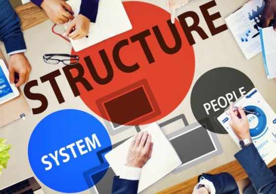 Registered business structure type