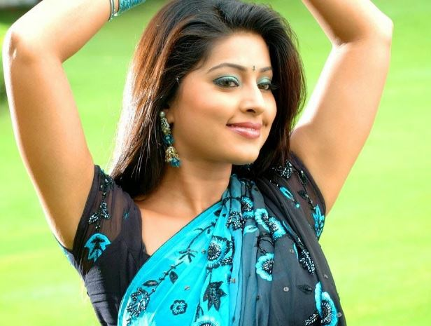 Top 15 Hottest South Indian Actresses 3