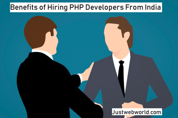 Hiring a Professional PHP Developer