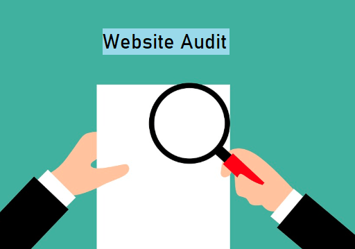 Importance of Website Auditing