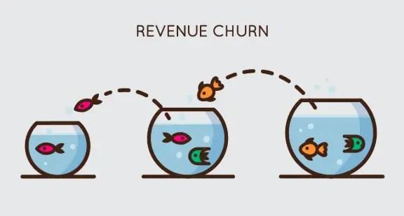 Revenue churn