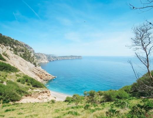 playa-es-coll-baix-alcudia-mallorca