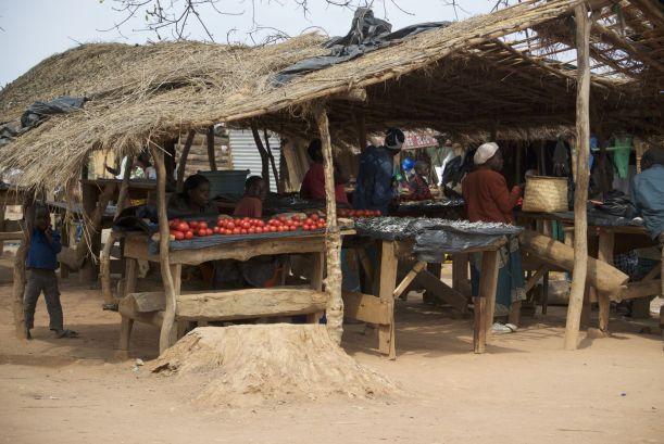 Tomaten en kleine visjes beslaan ongeveer 90% van het eten dat langs de weg verkocht wordt