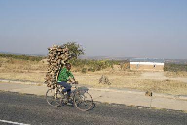 Houtkap voor houtskool is een groot probleem, maar het levert wel mooie fietsers-foto's op