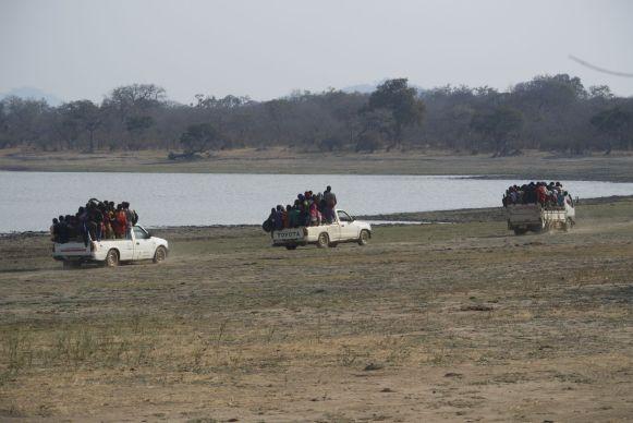 Heel veel malawianen die ik gesproken heb, hebben nog nooit een olifant gezien. Deze groep uit Mzuzu heeft geluk gehad.