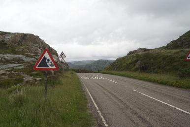 En: what goes up, must go down! En op een fietsvakantie is dat toch altijd weer een genot!