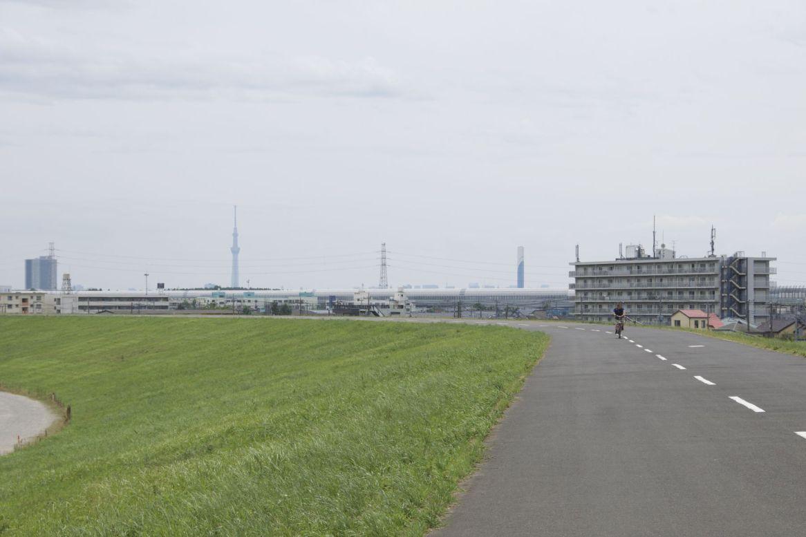 Dit is toch een plezierige manier om de grote stad in te fietsen.
