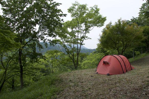 Niet veel plek om je tent op te zetten, maar wel weer lekker groen.