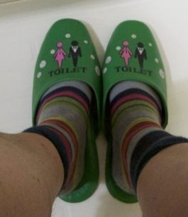 Japanse wc slippers