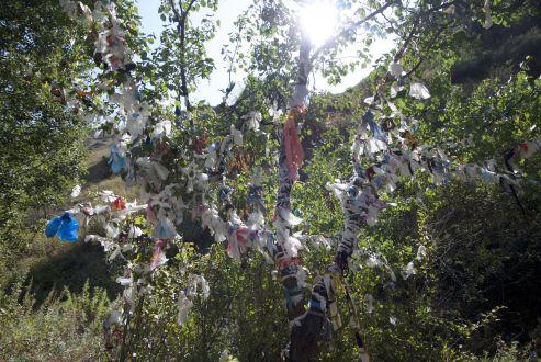 Hier is het bewust gedaan, maar afval in het landschap is wel een probleem. Glas en plastic en hele vuilniszakken worden overal gedumpt. Wij fietsen gerust 3 dagen met ons afval achterop de fiets rond tot we een prullenbak vinden, maar men gooit hier gewoon alles van zich af.