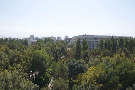 Uitzicht over Bishkek vanuit het reuzenrad.