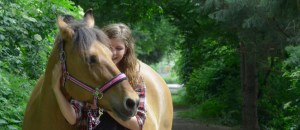 Die Arbeit als Pferdegestützter Coach
