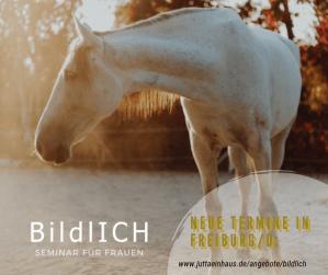 Workshop für Frauen I Pferdegestütztes Coaching