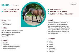 Pferdegestütztes Coaching Übung Deutschland