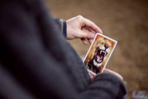 Offene Karten im Coaching