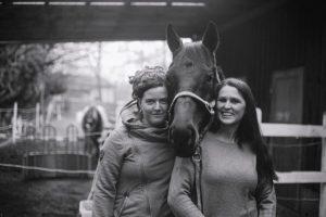 Pferdegestütztes Coaching I Vollblut