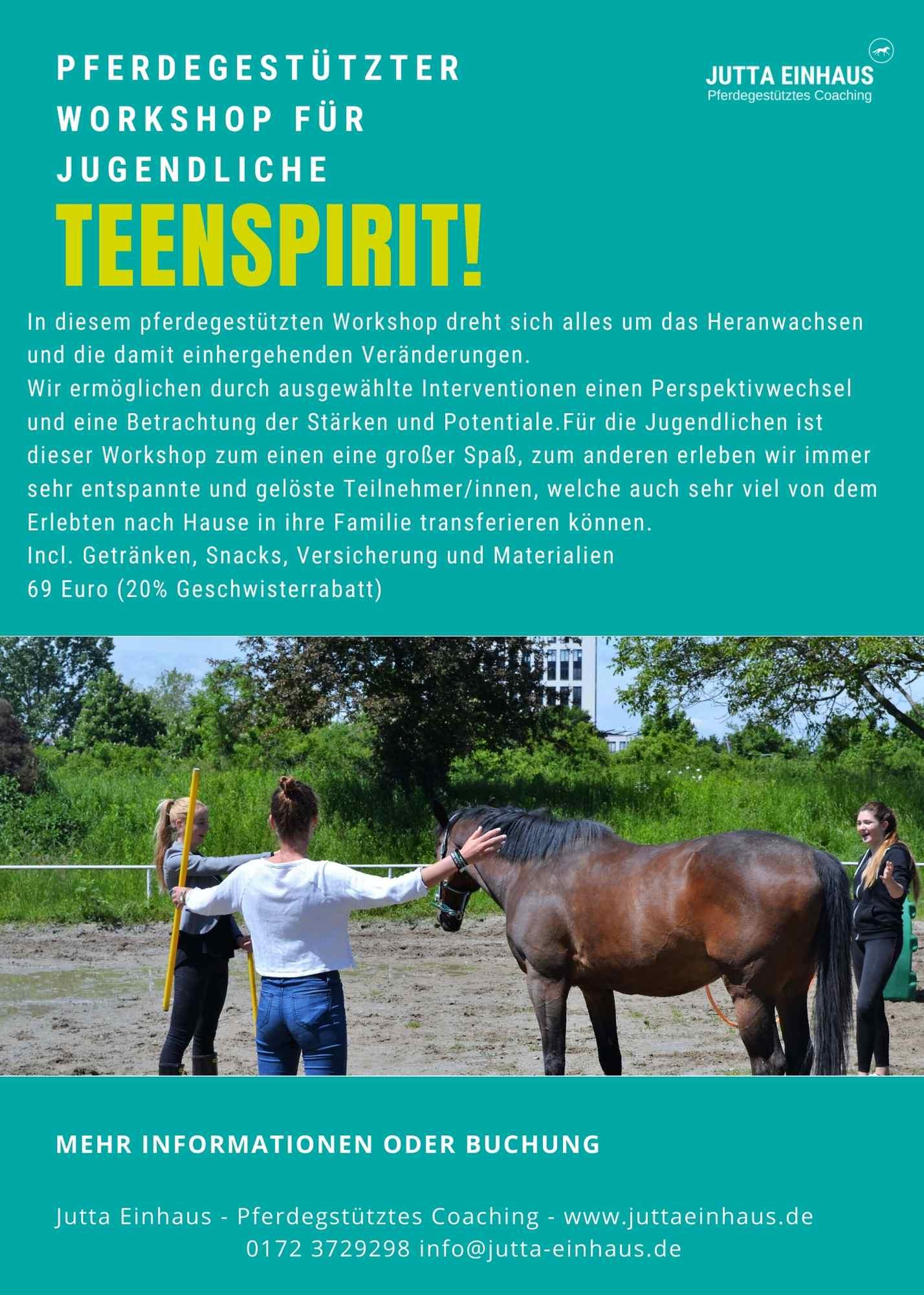 Pferdegestützt Workshop (1)