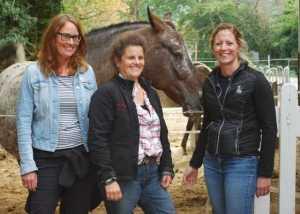 In Ausbildung zum Pferdegestütztem Coach