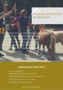 Ein Gutschein für ein Pferdegestützten Workshop