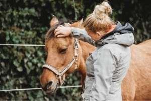 Coaching mit Pferden in Deutschland