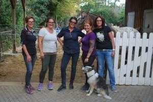 Pferdegestütztes Coaching Deutschland