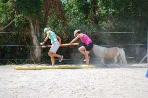Parcour im Pferdegestützten Coaching