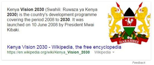 Vision 2030 and What It Means According To Wikipedia JUUCHINI