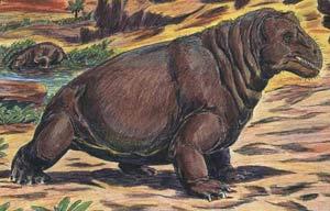 Figure 4: Mormosaurus seeleyi