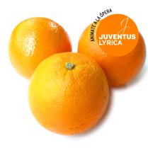 el amor por tres naranjas