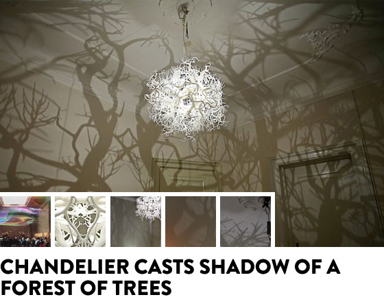 Chandelier casts shadows of a forest of trees