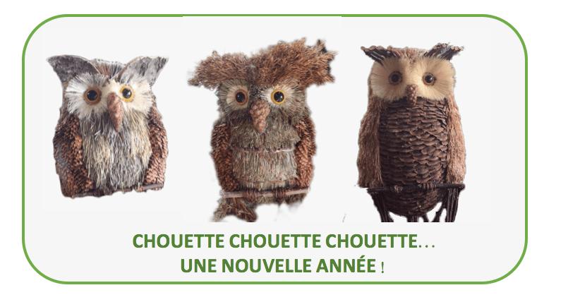 «CHOUETTE,  L'ANNÉE 2018 COMMENCE !»