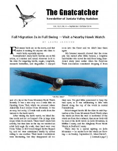 front page of Gnatcatcher